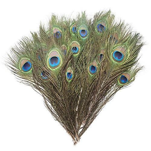 peacock feathers bulk