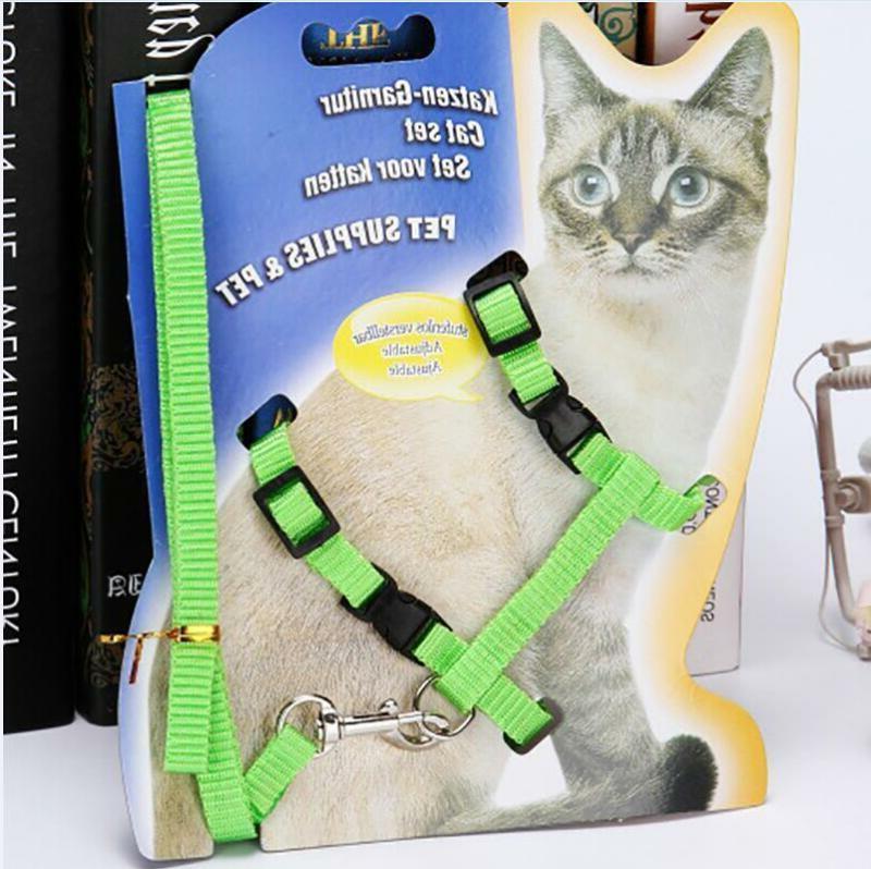 Pet Collar Leash Set Belt Pet