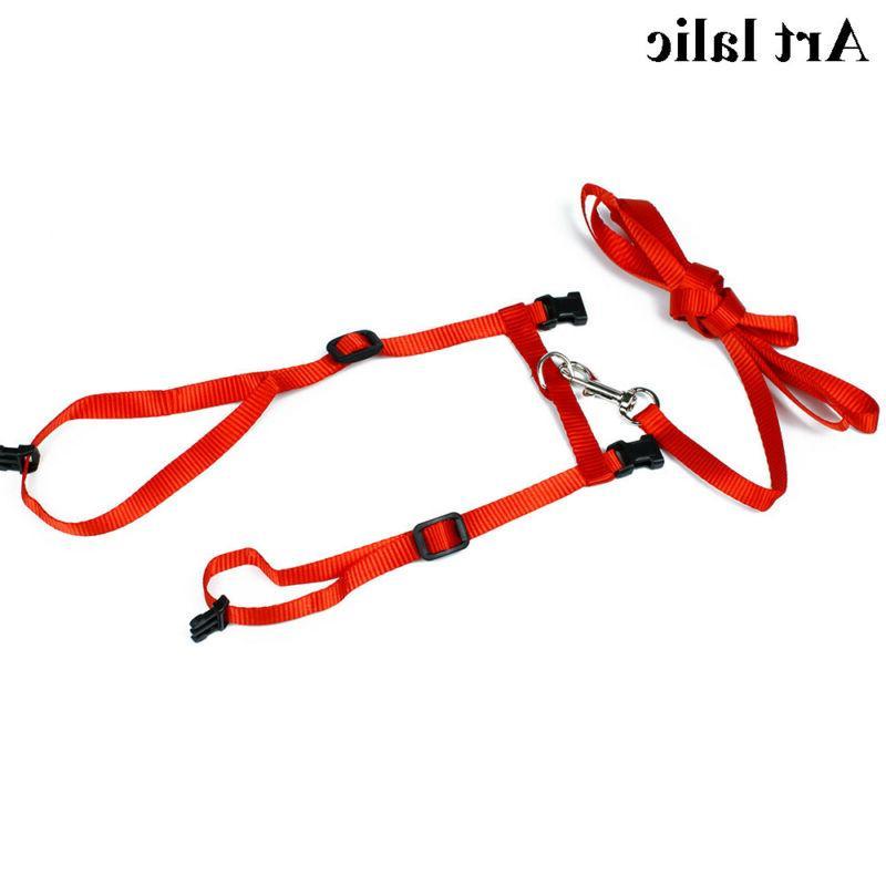 Pet Leash Set Denim Belt