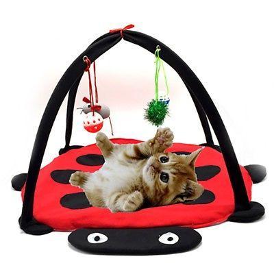 Pet Play Activity Tent Exercise Kitten Pad Bells