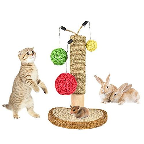 pet cat scratching posts interactive