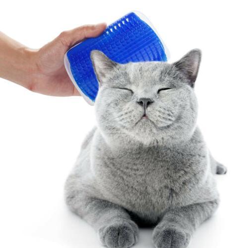 US Cat Massager Play Scratching Brush