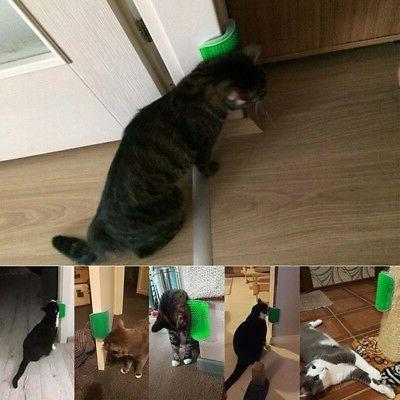 Pet Cat Groomer Brush Wall Massage Comb & Catnip US