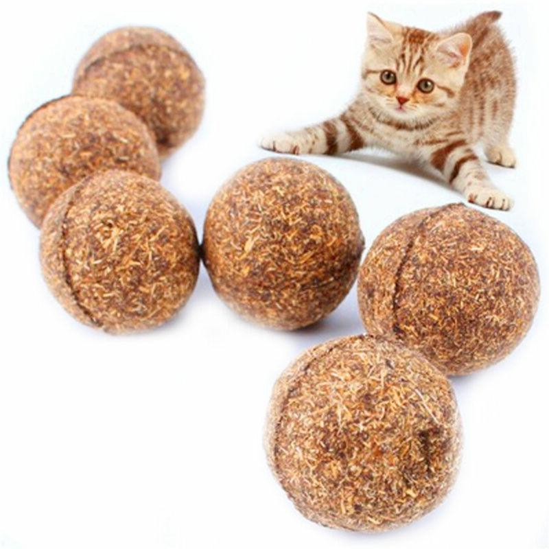 Pet Chew Toys Natural Kitten Funny