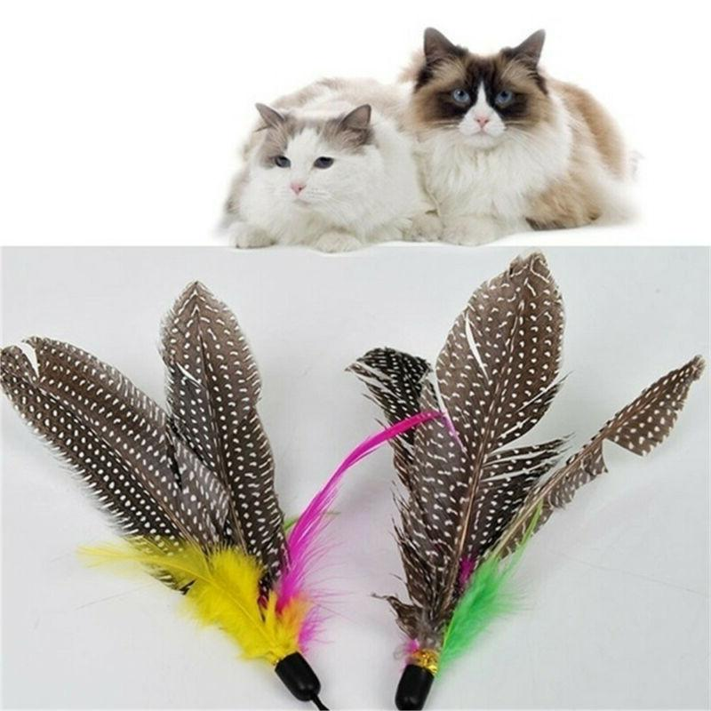 Pet Nature Feather Wand Supplies