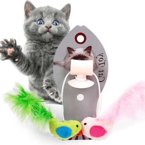 Pet Toys Bird Cat Window Sucker Teaser Feather Toy