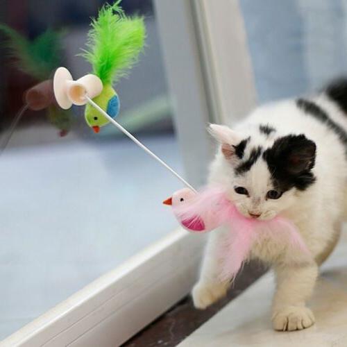 Pet Cat Toys Bird Cat Window Teaser Feather Toy