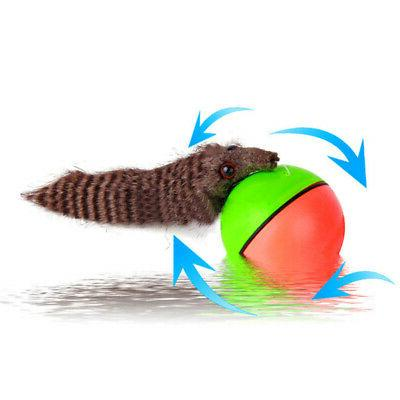 Pet Toys Electric Beaver Rolling Ball For Dog