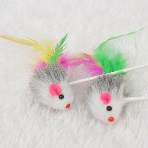 Pet Dog Cat Toys Funny Play Colorful Feather Stick Supplies