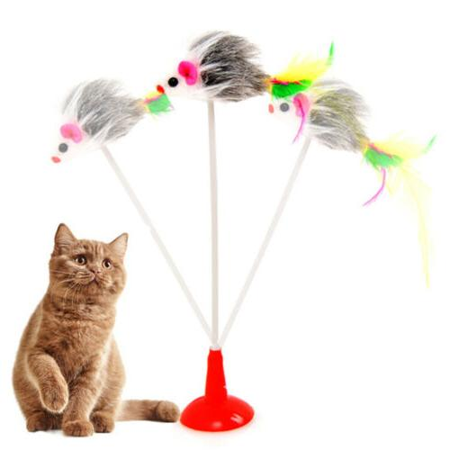 pet dog cat toys funny play spring