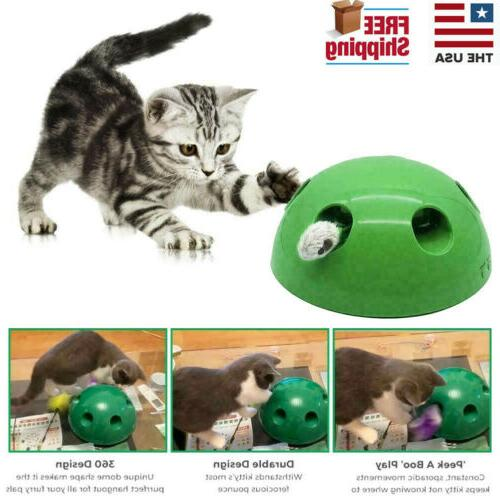 pop n play interactive motion cat toy