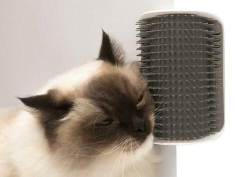 Catit Senses 2.0 Groomer Cat LB
