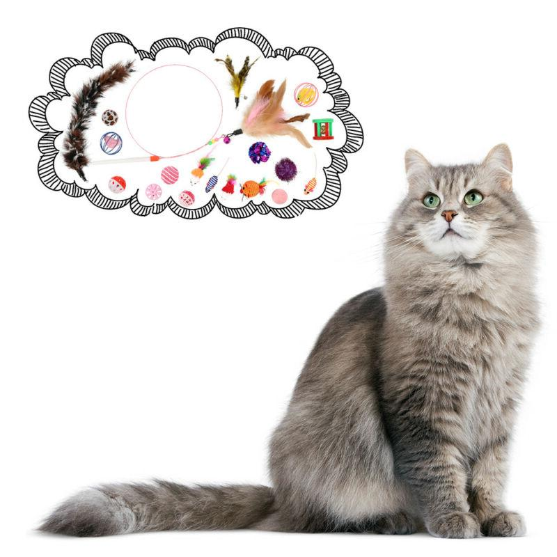 Sweet Variety Pack 20 Pieces with Cat Feather