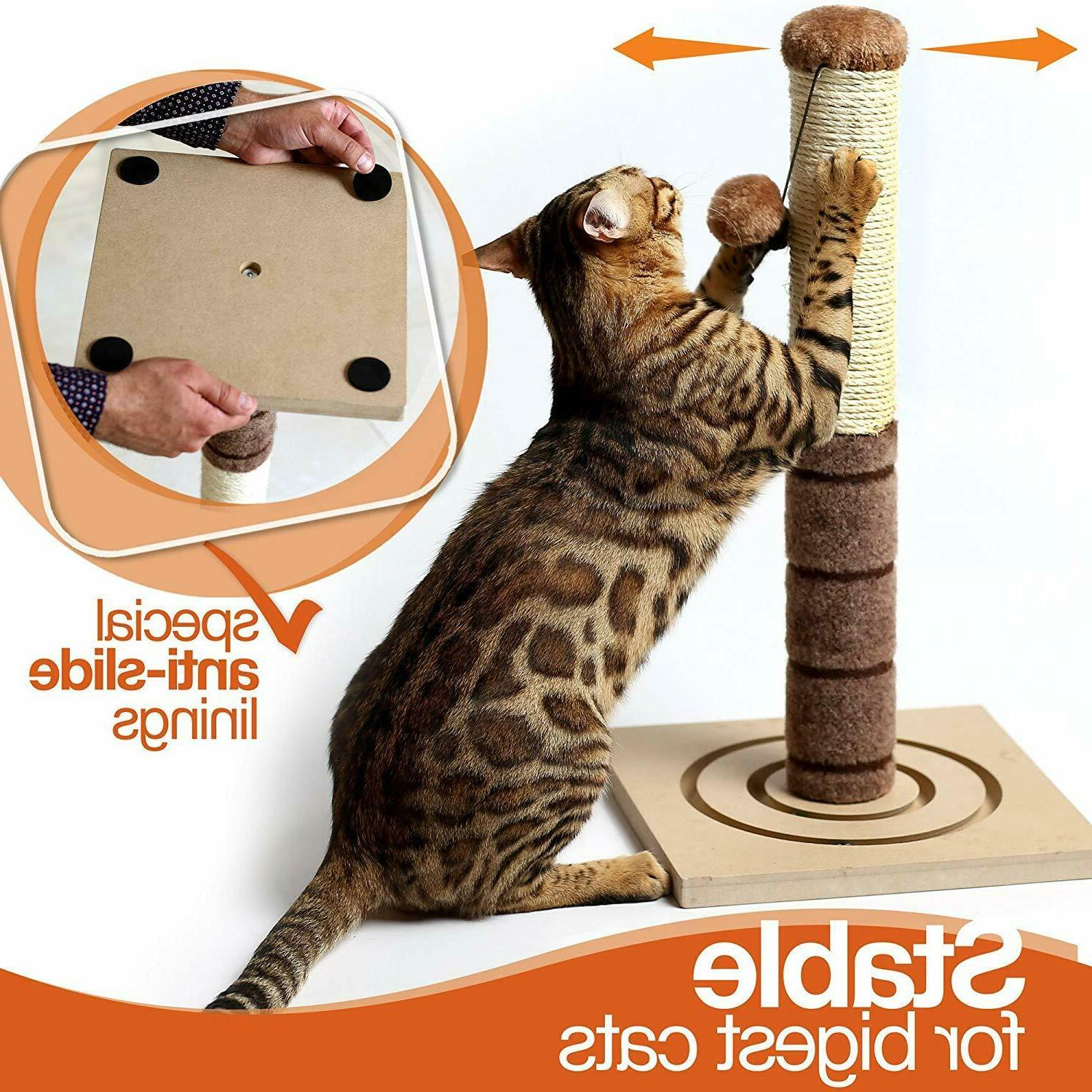 Tall Scratching Cat Interactive Toys Cat Kittens