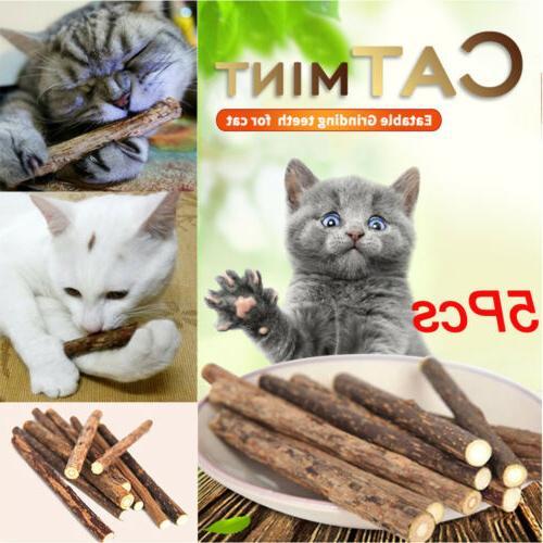 US Cats Natural Mint Chew Stick Catnip Molar Snack Toys Kitt