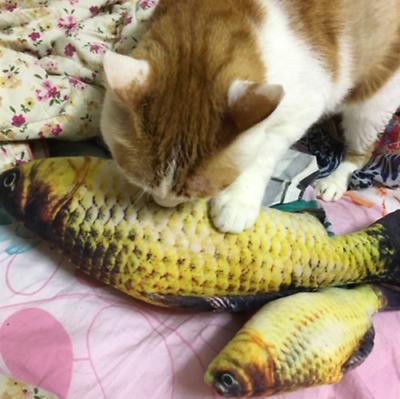 US Fish Mint Stuffed Pet Play Kicker