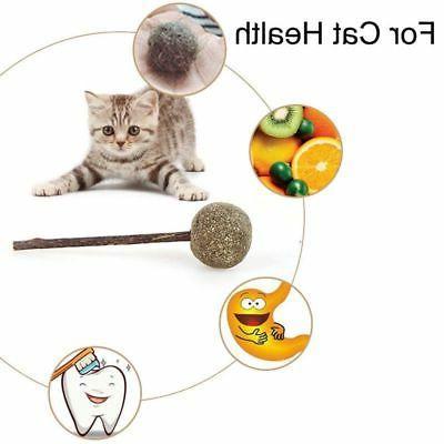 USA Catnip Toys Cat Toys Ball Funny Kitten