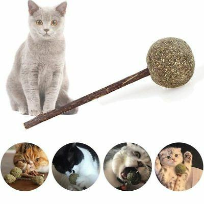USA 1PC Catnip Lollipop Toys Cat Toys Catnip Ball with Stick