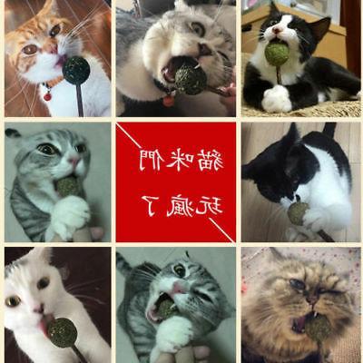 USA Catnip Toys Cat Catnip Ball Stick Funny Kitten