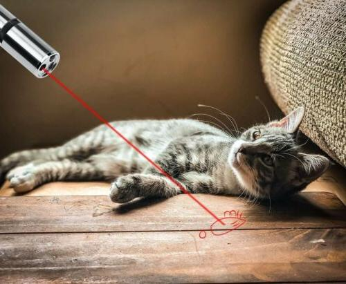 LASER POINTER USB RECHARGEABLE PEN ~ in 1 Cat Red US