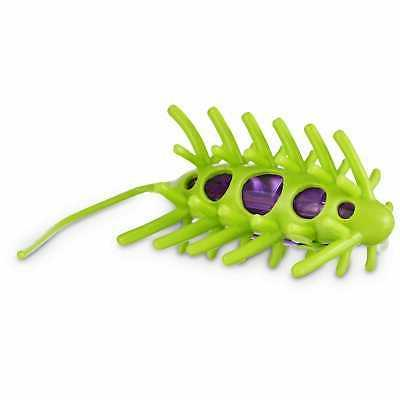 wiggle bug cat toy