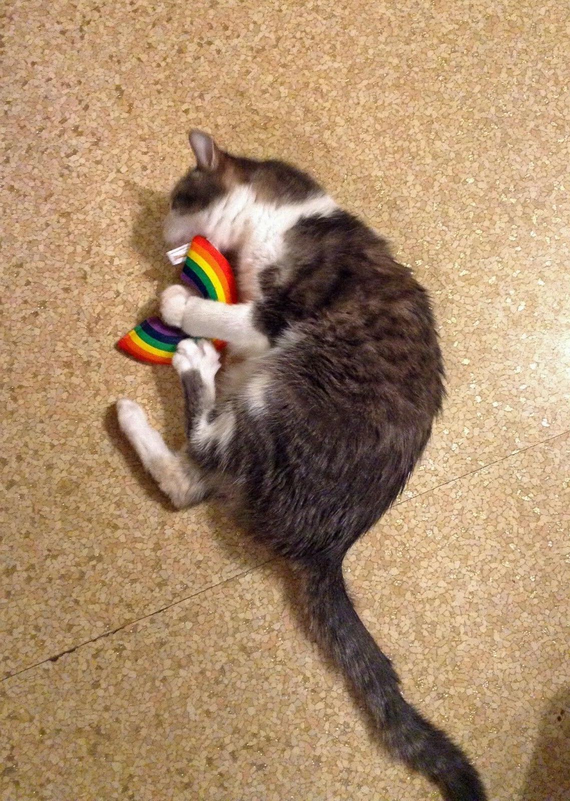 Yeowww! 100% Toy, Rainbow