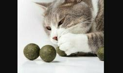 Natural Catnip Ball | Playful Treats | Cat Bite Toy | 1ct |