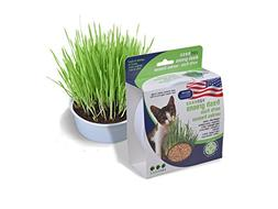 Van Ness Oat Garden Kit, 1-Ounce
