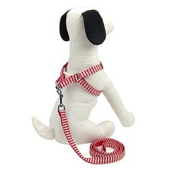 Alfie Pet by Petoga Couture - Harvest Harness and Leash Set