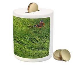 Ambesonne Nature Piggy Bank, Cute Cat Watching a Butterfly o