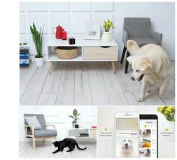 Petcube Play Smart Pet Camera with Interactive Laser Toy. Re