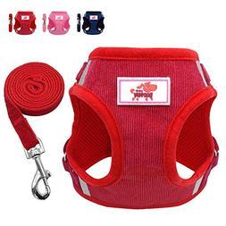 Beirui Reflective Dog Vest & Leash Set - Soft Harness Medium