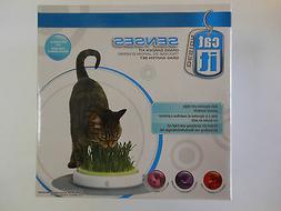 senses grass garden kit